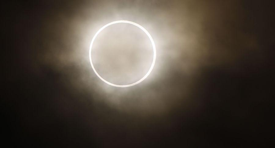 Солнечные затмения оказывают эффект наживотных ирастения