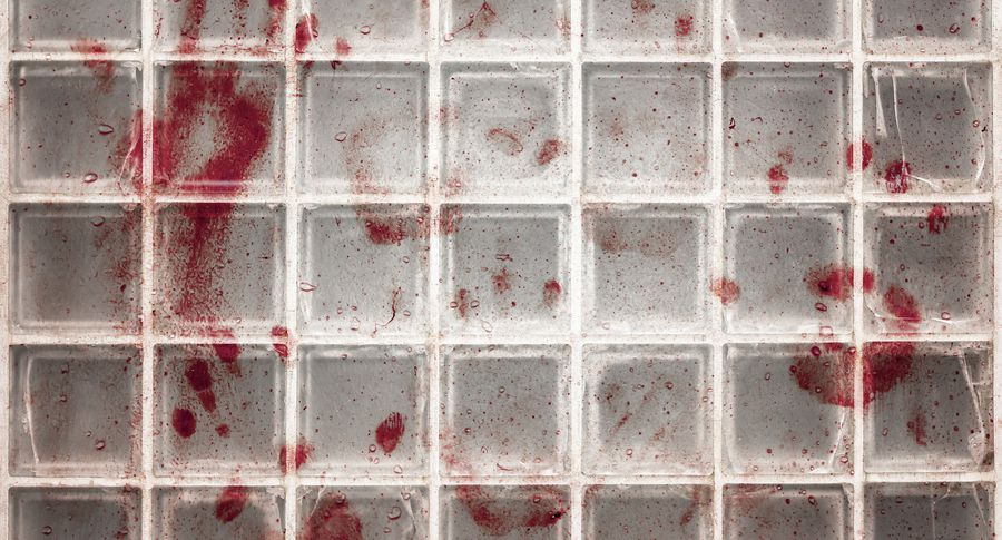 СМИ узнали омассовой казни 27 человек вЧечне
