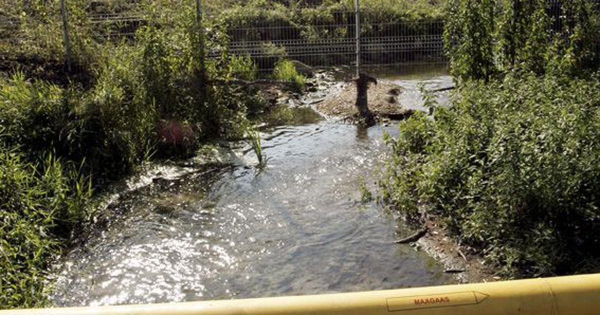 Piiritustehase aia taga on Soolikaoja reostunud