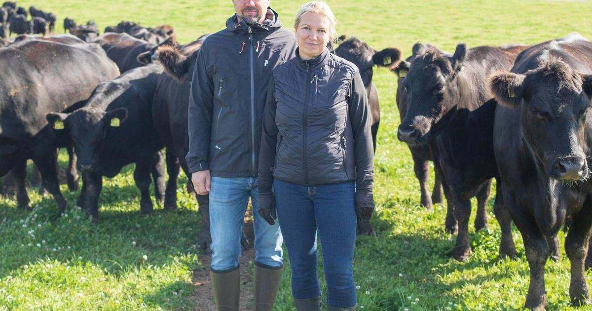 Parimaks põllumeheks pürgivad ka Valgamaa talunikud