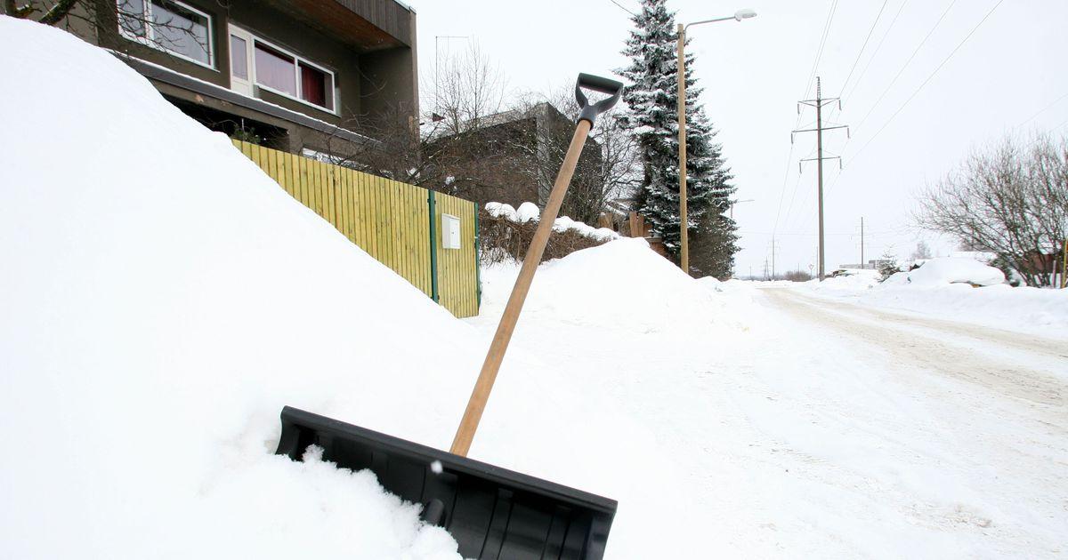 Mees võttis elukaaslase peksmiseks kasutusele lumelabida