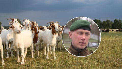 Одна незначительная опечатка вмиг может опорочить Силы обороны Эстонии