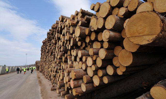 106a24f5071 Metsa- ja puidutööstus ootab 10-protsendilist kasvu - Äriuudised ...