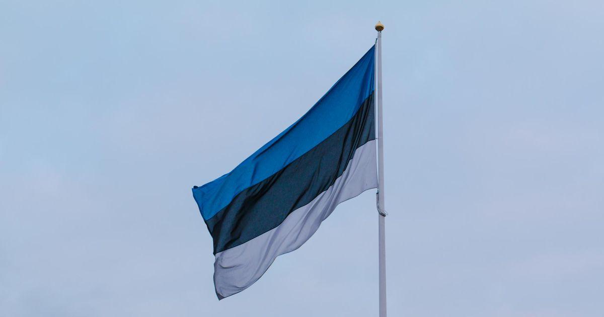 Pühapäeval lehvivad isadepäeva puhul Eesti lipud
