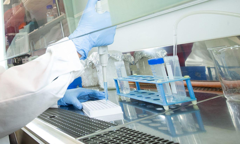 Koroona antikehade testimine laboris. ФОТО: Kristjan Teedema