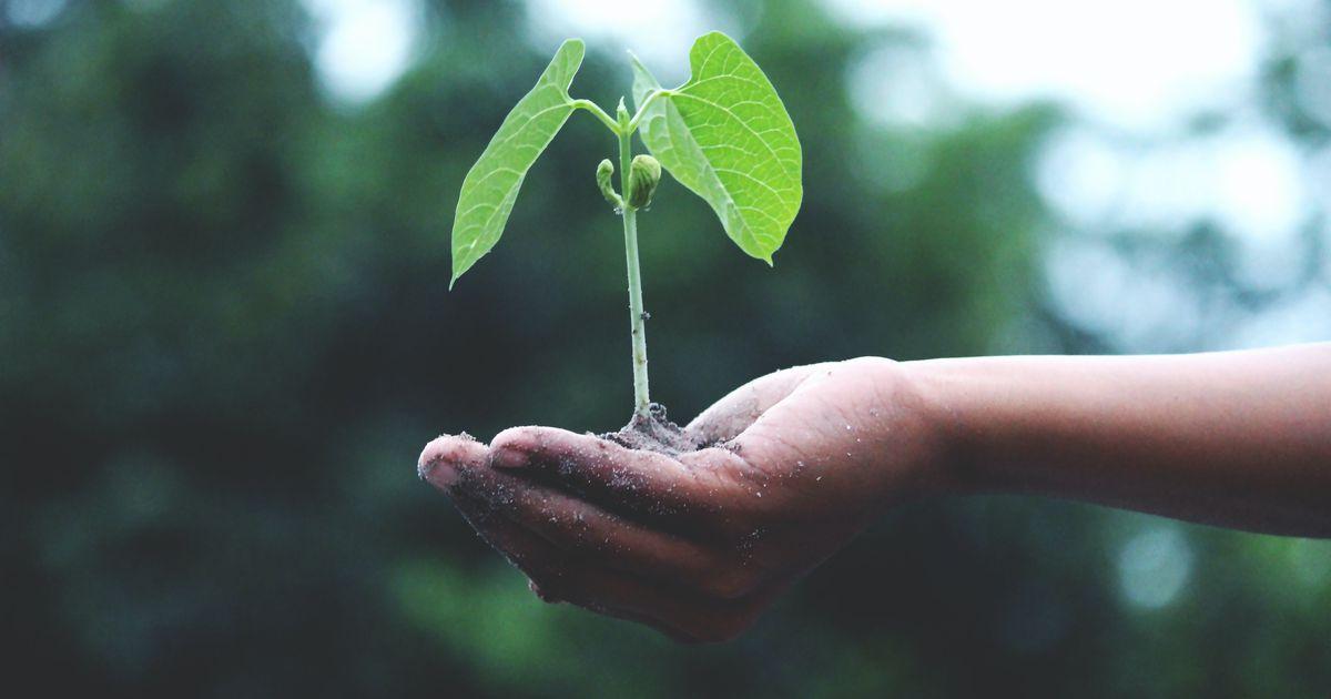 Iemesli, kāpēc koncentrēties uz izaugsmi, nevis rezultātu