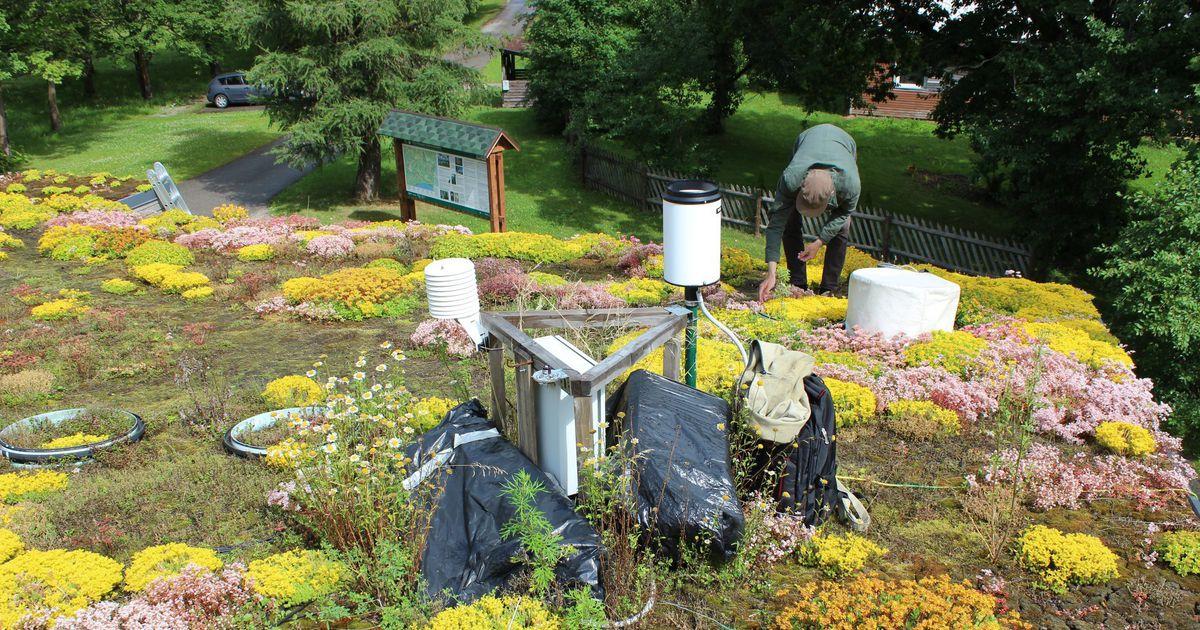 Iisaku looduskeskuse katus pakub teaduslikku huvi